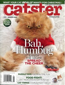 CATSTER Cover